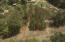 241 Pine Tree Cir, Dadeville, AL 36853