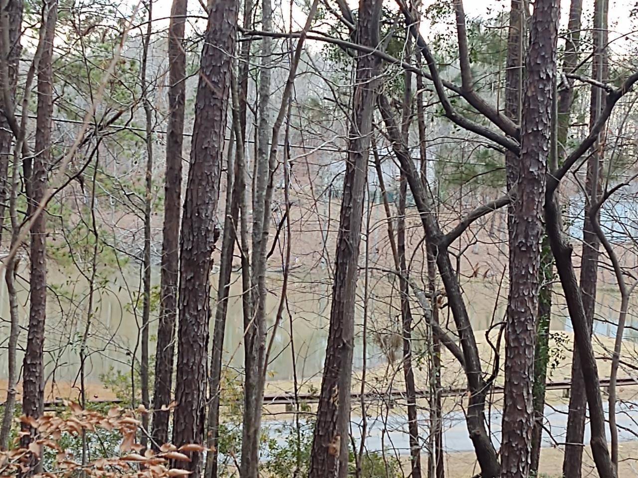 Lot 37 Fern Ridge Crt, Dadeville, AL 36853
