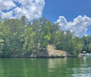 Lot A Loopety Loop, Dadeville, AL 36853