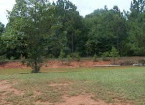 Lot 4 Landing Ln and 11 acres, Dadeville, AL 36853
