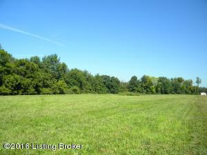 71 N Painted Leaf, Shelbyville, KY 40065