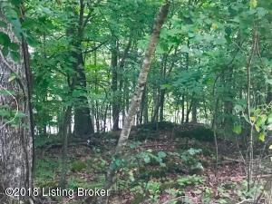 9 Whippoorwill Cove, Westview, KY 40178
