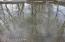 Reflections of Fox Run Creek