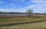 Lot 68 The Breakers at Prospect, Prospect, KY 40059
