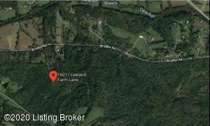 16011 Leeland Farm Ln, Fisherville, KY 40023