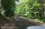 Near hiking trail.