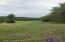 89 Jack Chappell Ln, Payneville, KY 40157