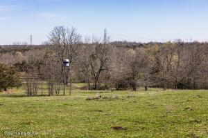 1507 Rebel Ridge Rd, La Grange, KY 40031