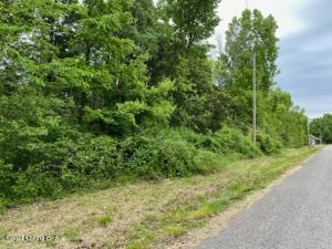 350 Doe Run Ct, Taylorsville, KY 40071