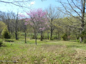 Tract C Hwy 2866, Shelbyville, KY 40065