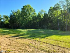 4010 Grand Oaks Ridge Ct, Lot 100, Crestwood, KY 40014