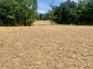 Lot 2 Water Tower Rd, Lebanon Junction, KY 40150