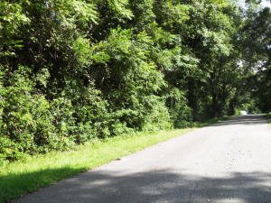 Tbd Covington, Rockingham, NC 28379