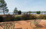 114 Butterfly Court, West End, NC 27376
