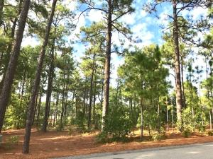 Pinehurst No. 2 building lot...one of few left, premier location facing 4th fairway.w/view of 5th fairway. Perfect topography, high elevation.