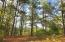 Build your custom home on this gorgeous wooded lot.