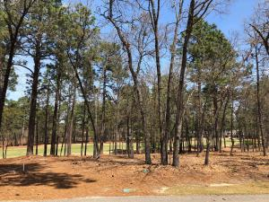 12 Bally Bunion Lane, Pinehurst, NC 28374
