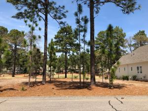 22 Bally Bunion Lane, Pinehurst, NC 28374