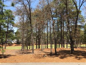 14 Bally Bunion Lane, Pinehurst, NC 28374