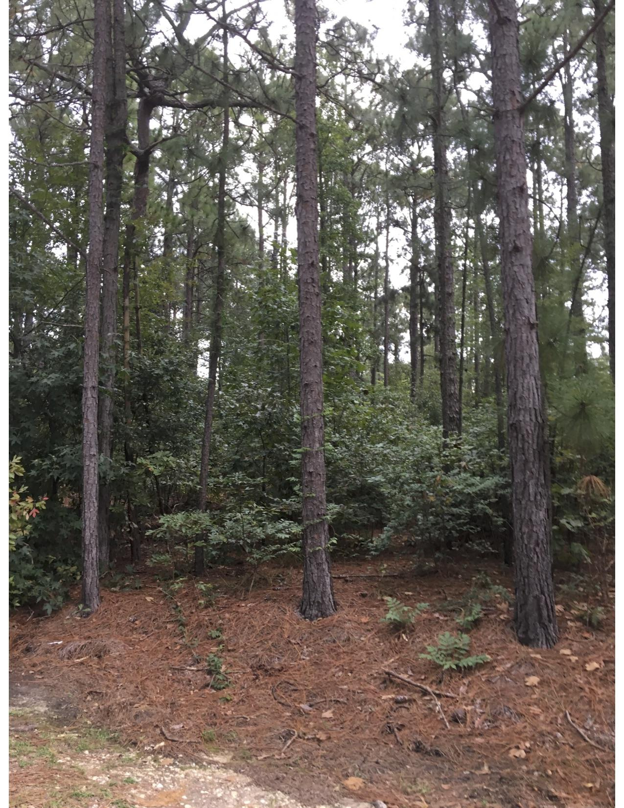 Pine Ridge Drive  327 B, Whispering Pines, North Carolina