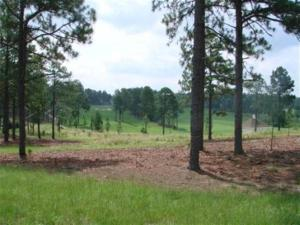 52 Plantation Drive, Southern Pines, NC 28387