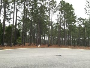 265 Kings Ridge Court, Southern Pines, NC 28387