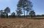 251 NE Pelham Trail, 17, Vass, NC 28394