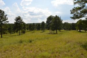 780 Broken Ridge Trail, West End, NC 27376
