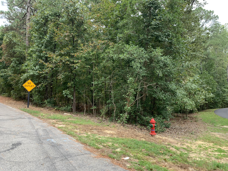 Arbutus Lane, Whispering Pines, North Carolina