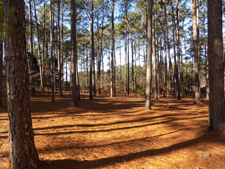 Lake Dornoch Drive  9, Pinehurst, North Carolina