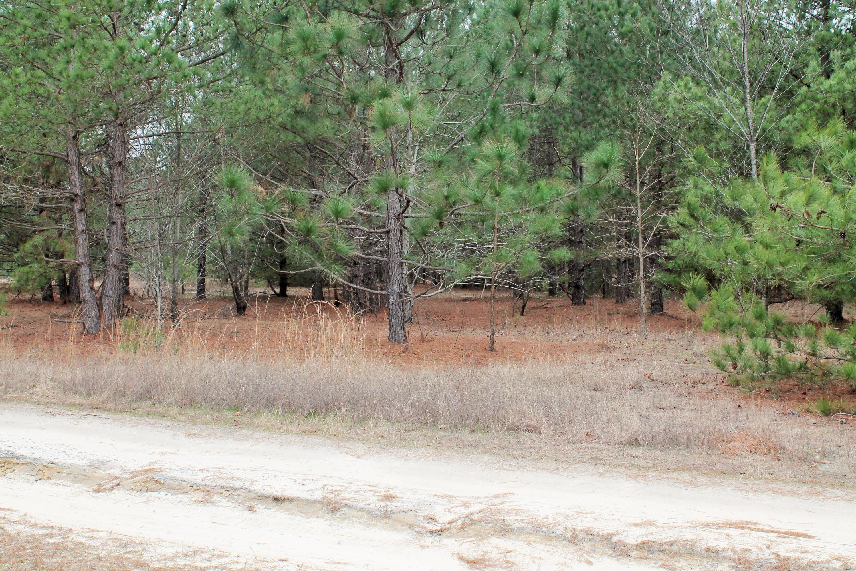 Split Rail Road, one of homes for sale in Whispering Pines