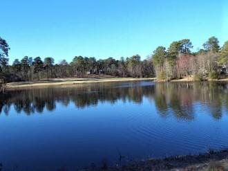 Woodenbridge Lane  248, Pinehurst, North Carolina