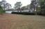 large low maintenance back yard