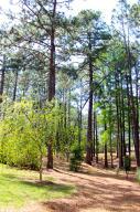 45 Martin Drive, Whispering Pines, NC 28327