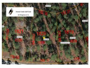 Aerial View Lot 1820