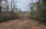 Tbd Mcgee Road, Rockingham, NC 28379