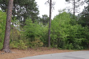 25 Beckett Ridge, Pinehurst, NC 28374