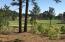 54 Plantation Drive, Southern Pines, NC 28387