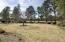127 Pine Lake Drive, Whispering Pines, NC 28327