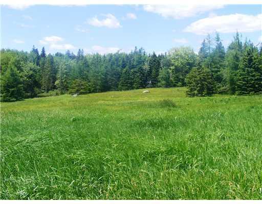 Land/Lot. The rolling meadow near...