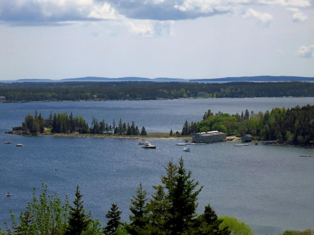 View from Ox Ledge