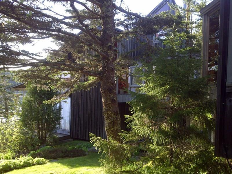 Side view of Shore Cottage