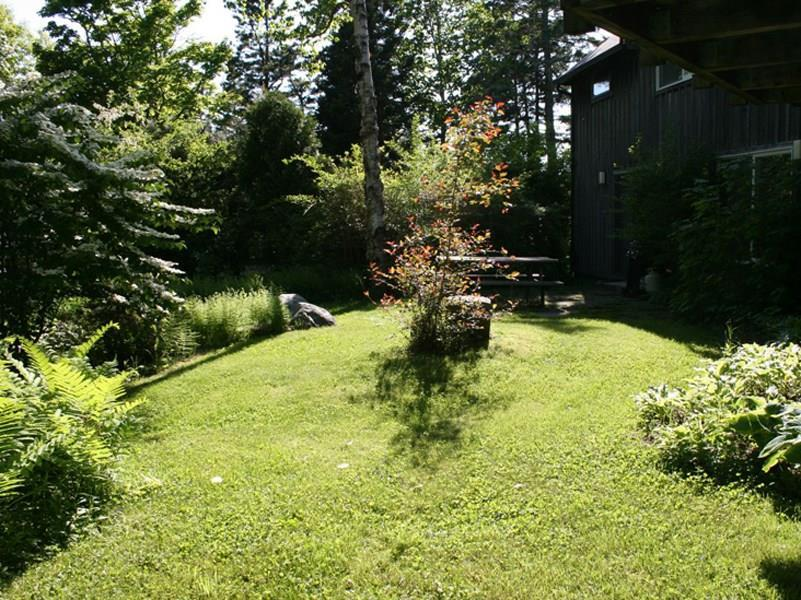 Yard area at Guest House