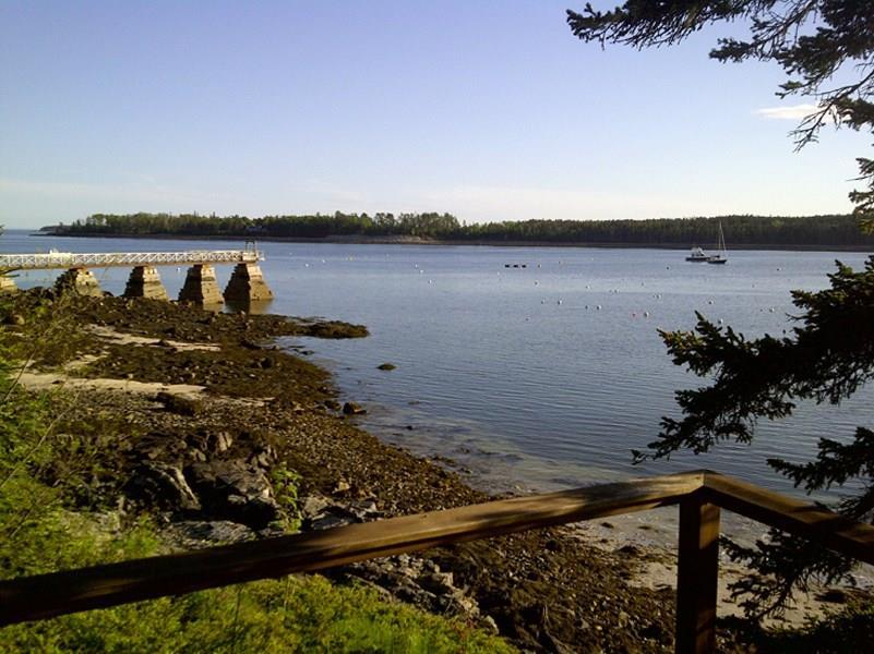 View from deck to Great Harbor...