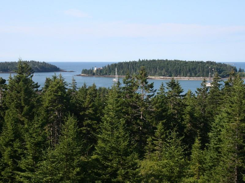 11+/- Private acres with water views...