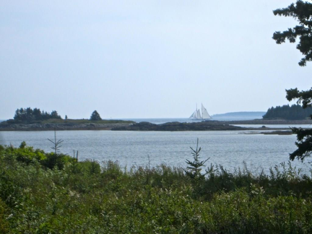 Distant sailboat