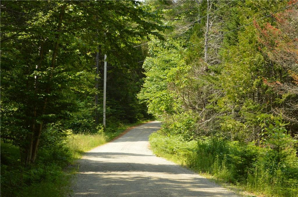 52 Bear Springs Lane