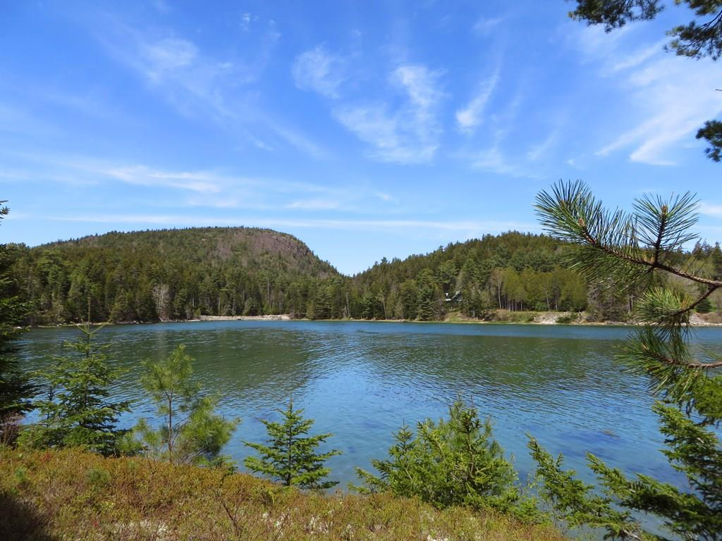 View to Flying Mountain in Acadia...