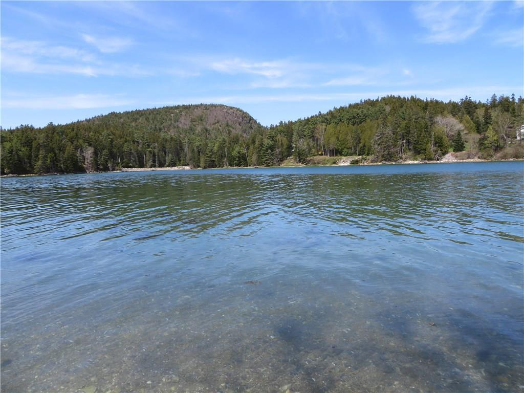Fernald Cove and Flying Mountain