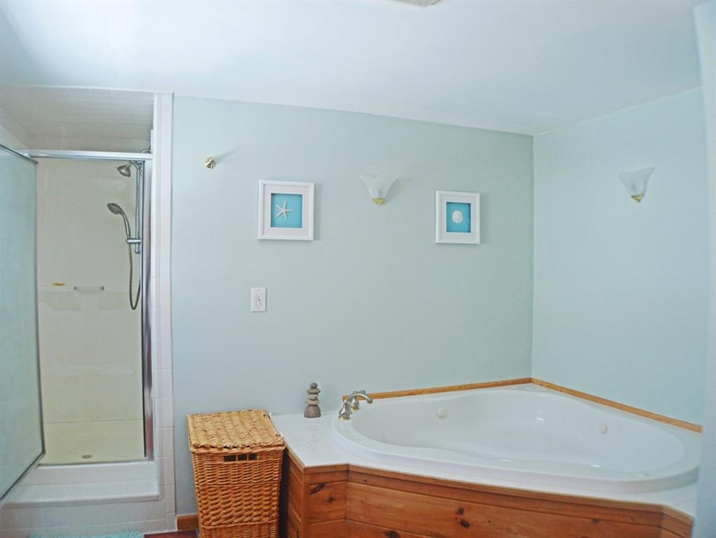 Master bathroom with jetted tub and...